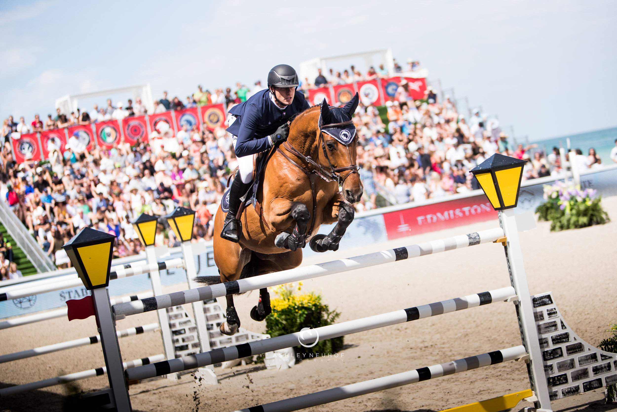 Gregory Wathelet and Qualido 3 at Global Champions League of Miami 2019. Photo by Ashley Neuhof Photography.