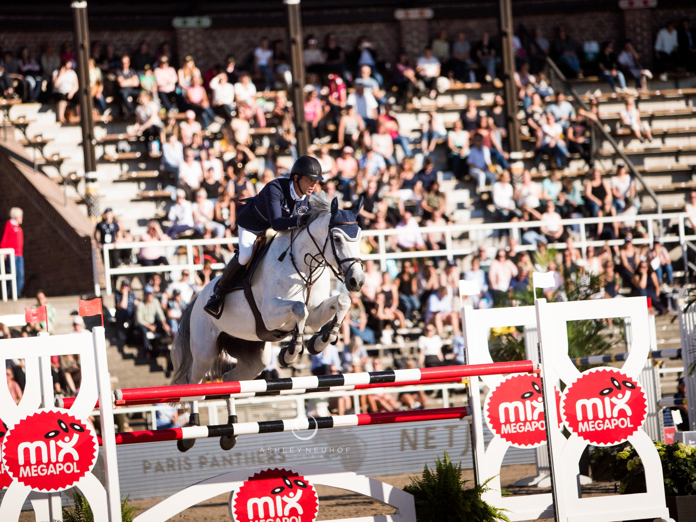 Harrie Smolders and Une de l'Othain at Global Champions League of Stockholm 2019. Photo by Ashley Neuhof Photography.
