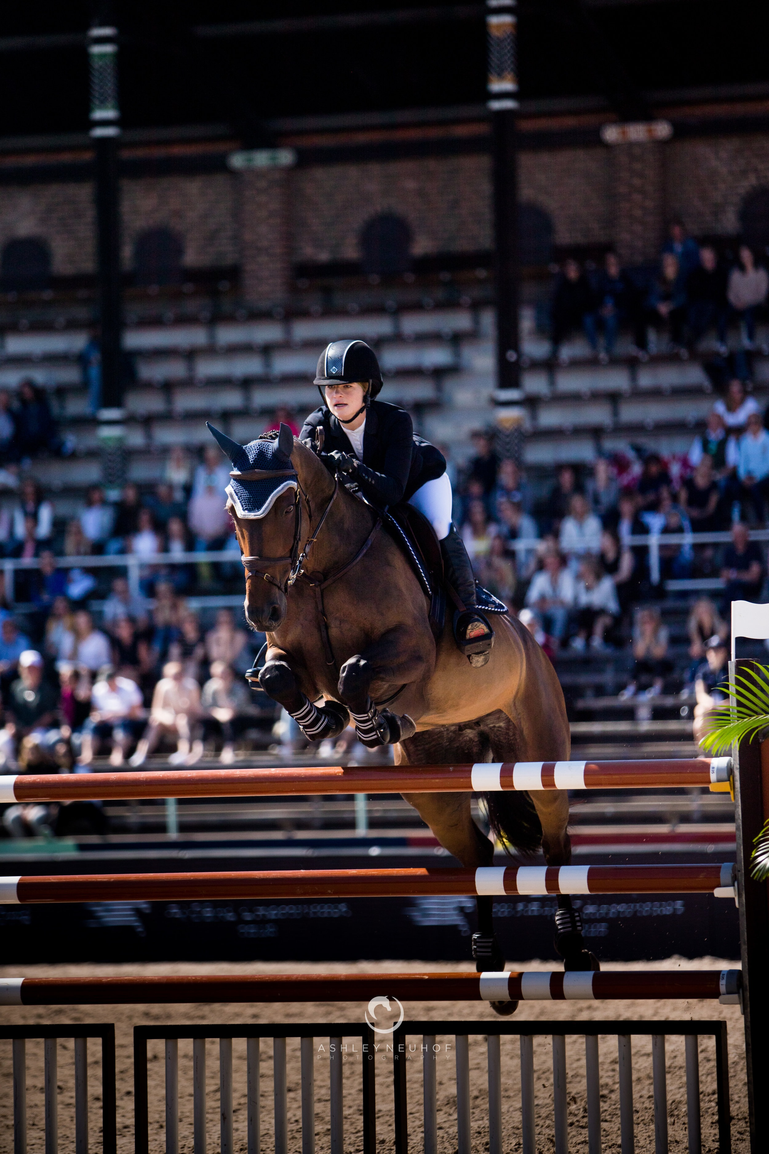 Jenn Gates and Hermelien Vd Hooghoeve at Longines Global Champions Tour of Stockholm 2019. Photo by Ashley Neuhof Photography.