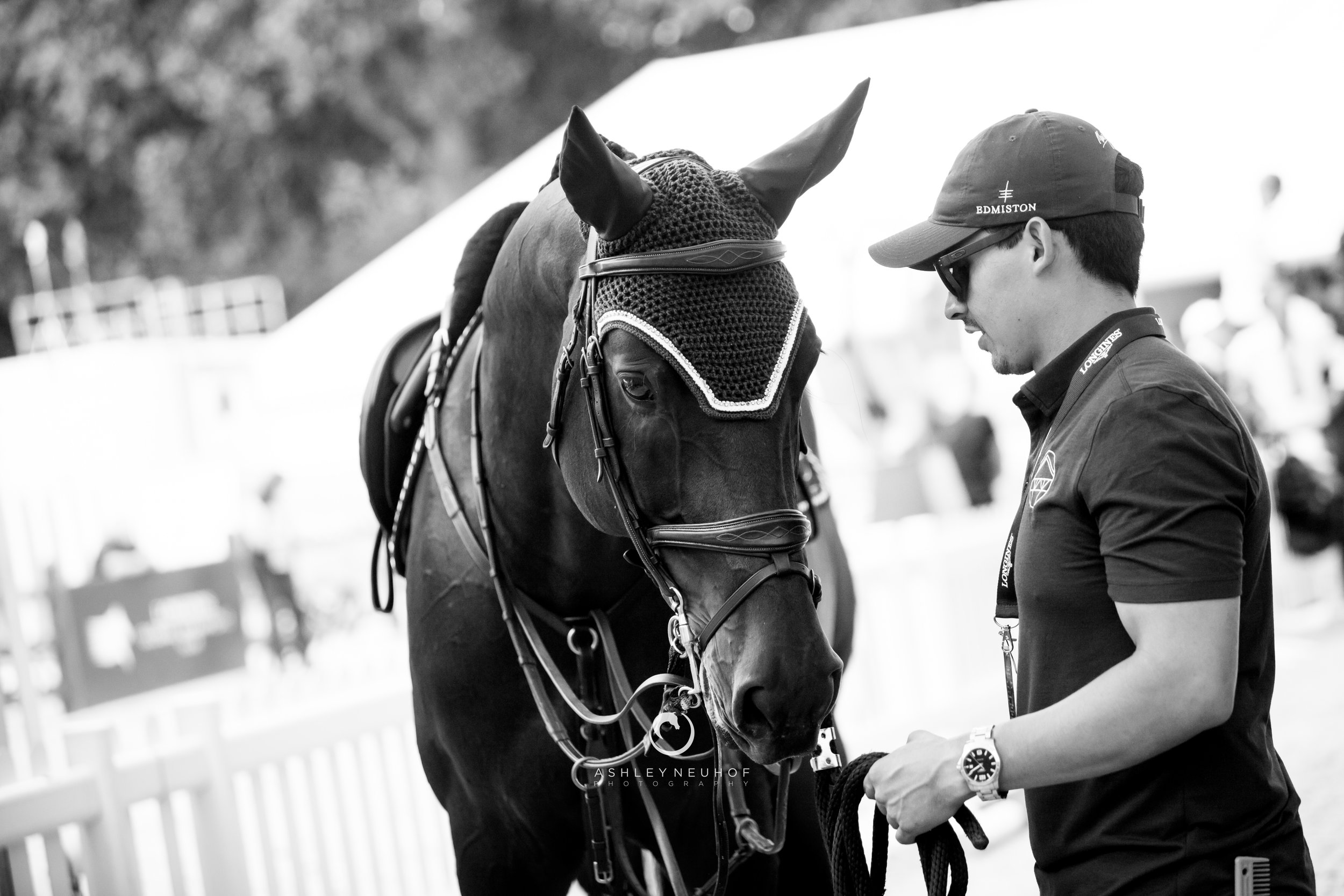 Dolinn and the Evergate Stables Team at Longines Global Champions Tour of London 2019. Photo by Ashley Neuhof Photography.