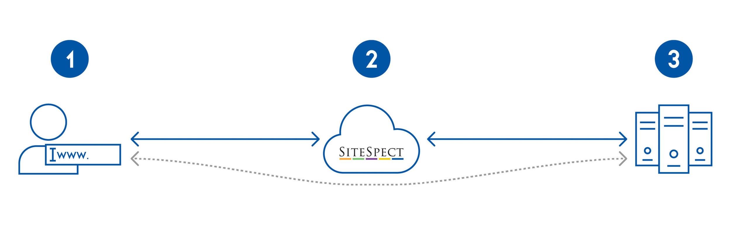Studio-Eighty-Seven-SiteSpect-Marketing-Support-Sales-Presentation-Graphic.jpg