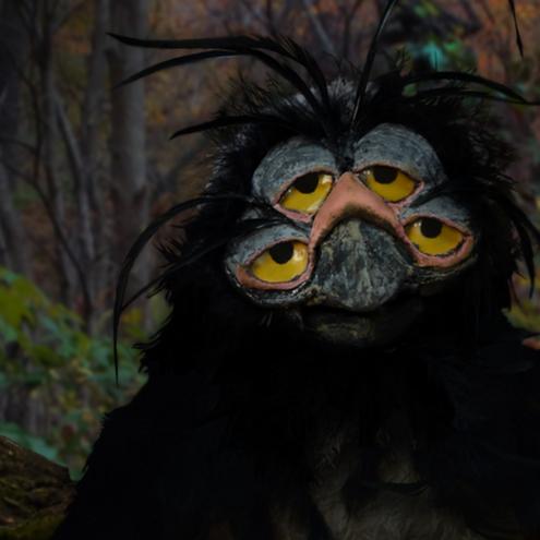 Secrets Owl.png
