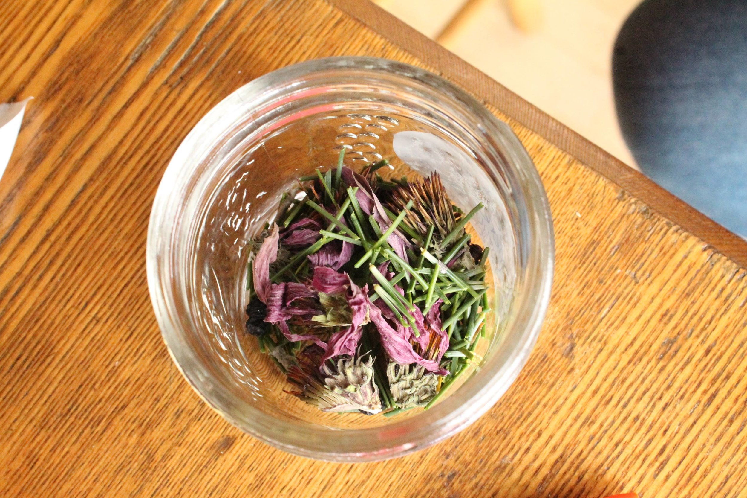 Plantes séchées:  Echinacea ,  pinus , baies de  sambucus . Lors de l'atelier ''Plantes d'automne 2018''.