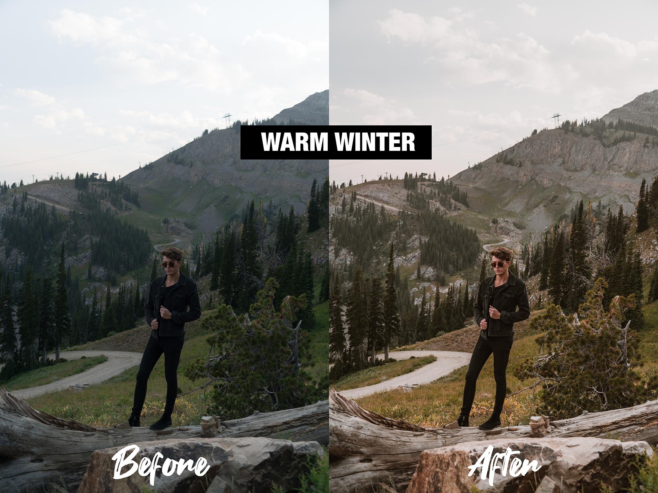 SSwarmwinter1.jpg