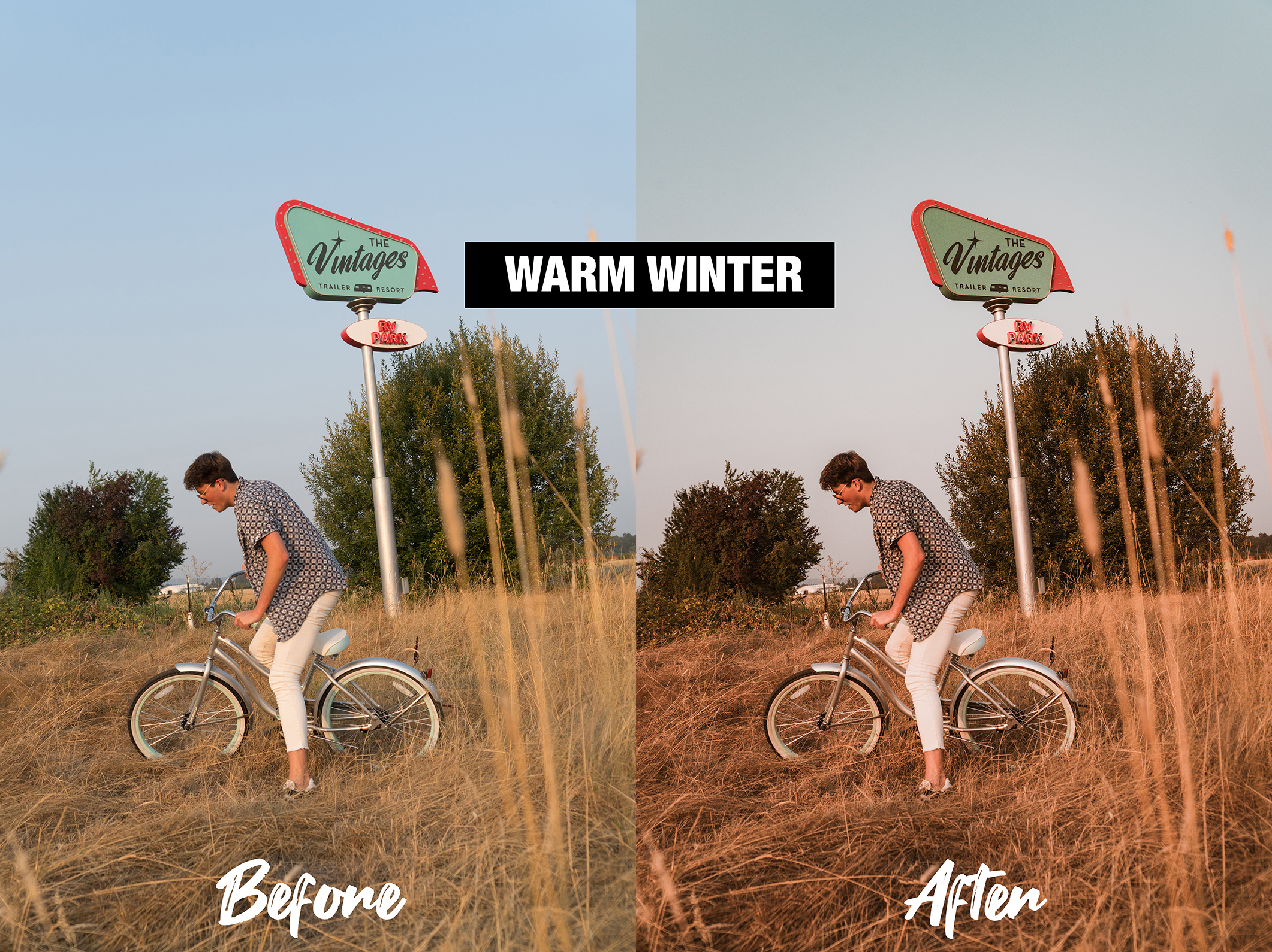 SSwarmwinter2.jpg
