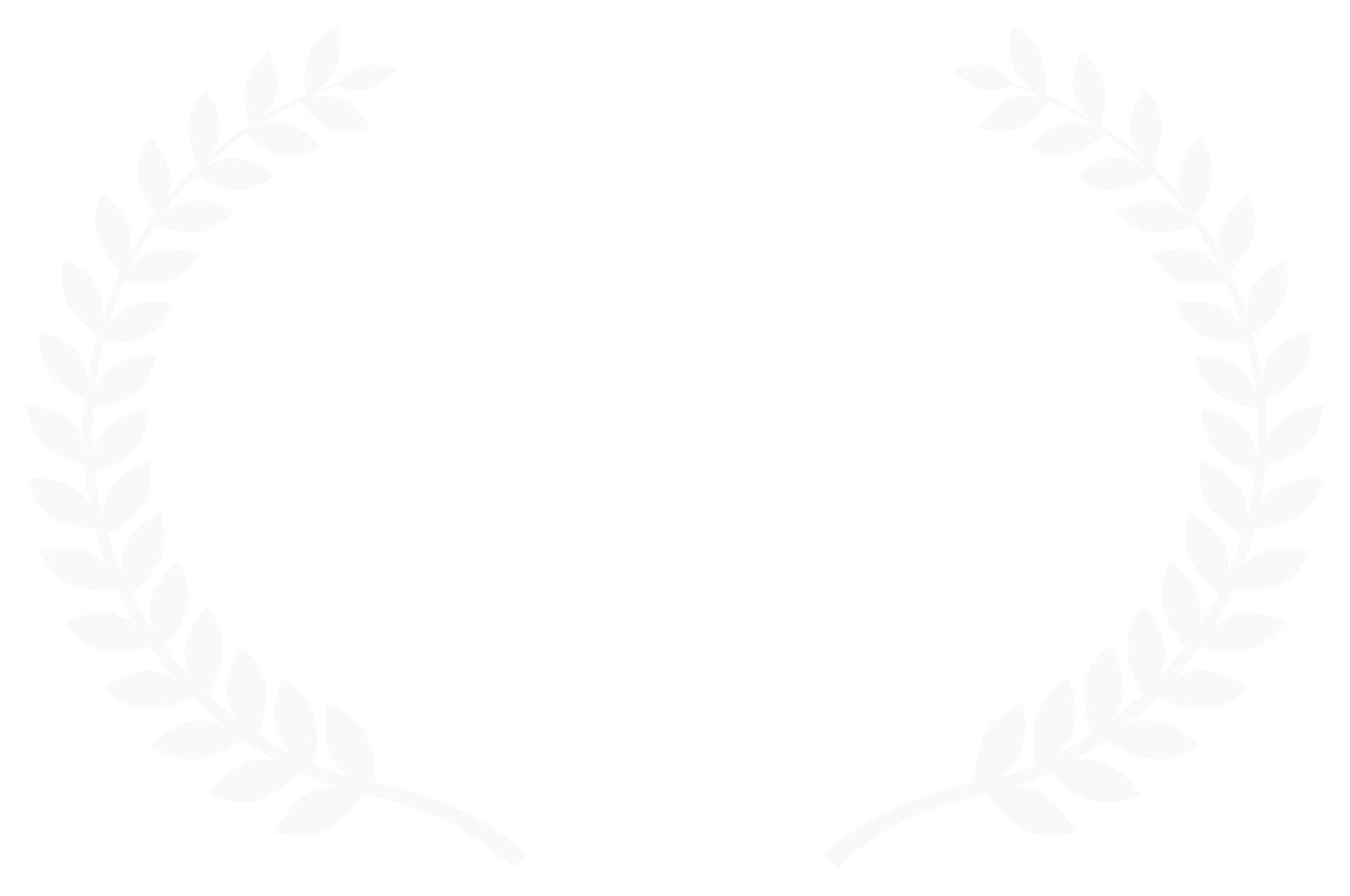 Semi Finalist - California Intl Film Festival  Davis Chinese Film Festival - 2017.png