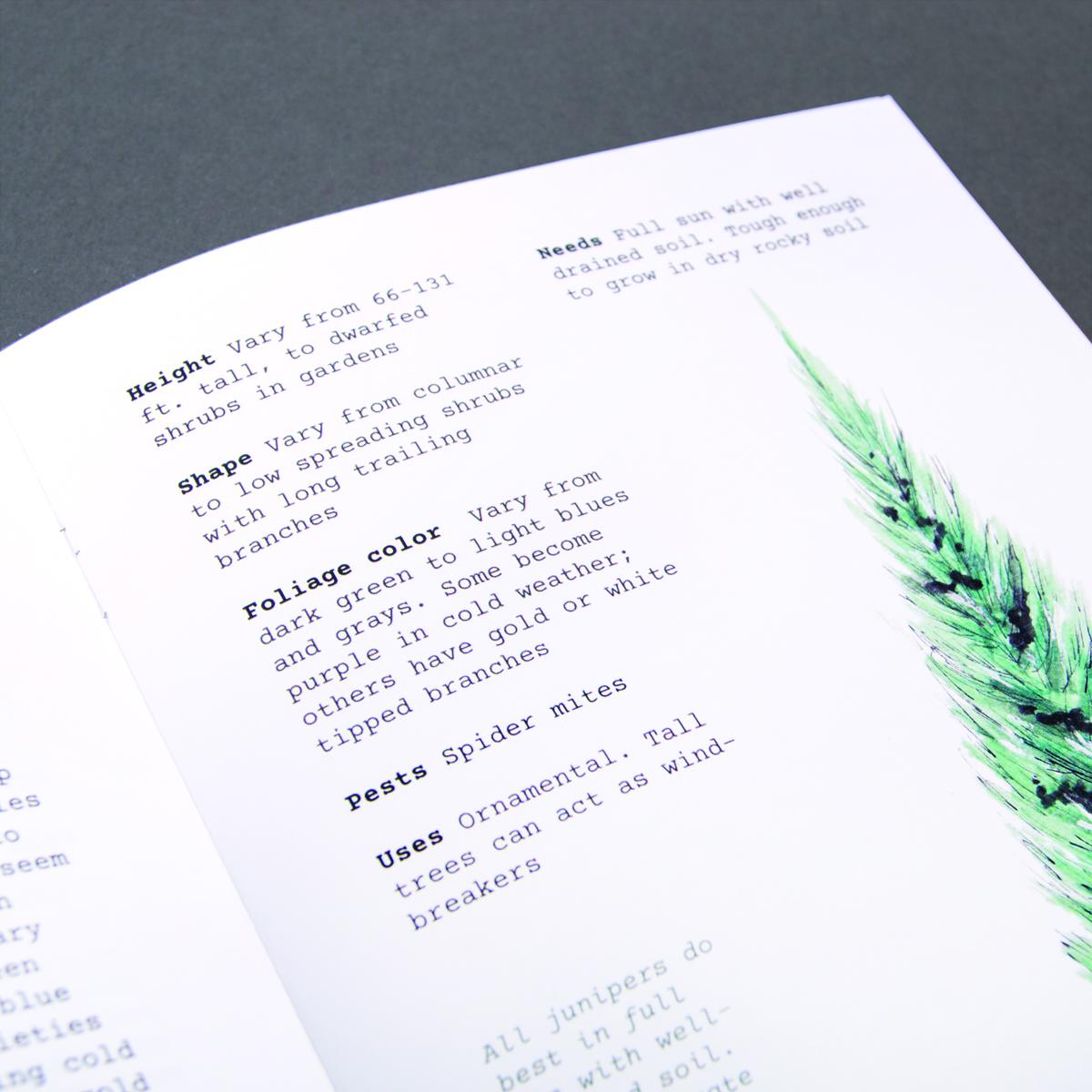 Field journal meets modern booklet. -