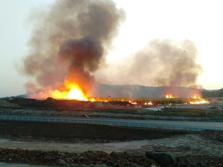 Bushfire Northern Rivers_Bushfire Risk Assessment