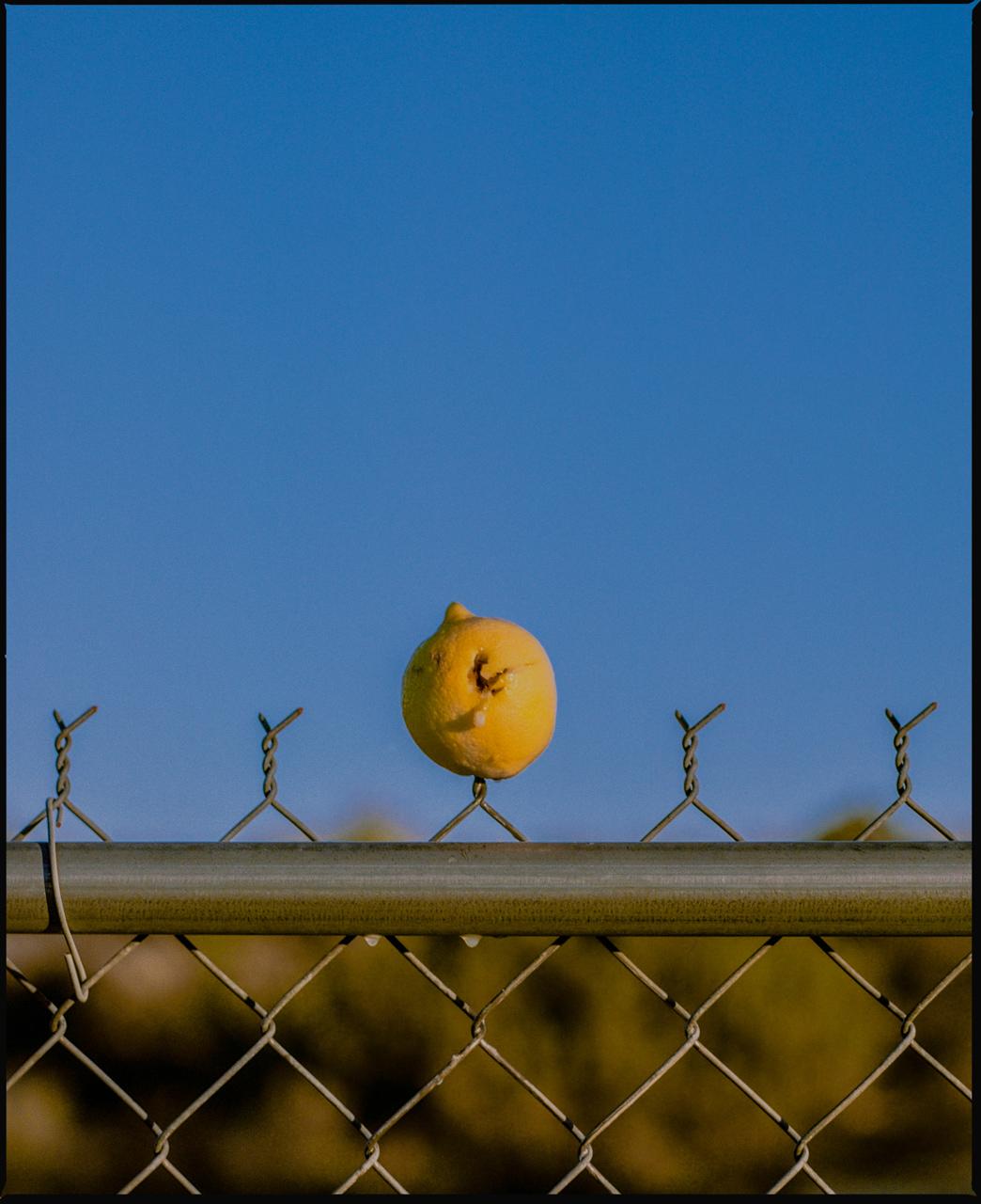Lemon_Hole_Joshua_tree.jpg