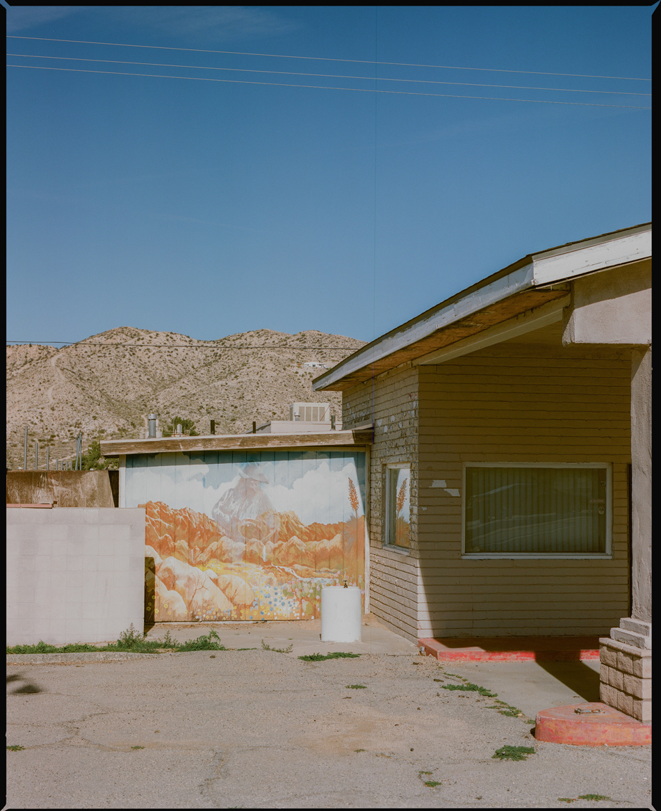 Mural_Landscape_Joshua_Tree.jpg
