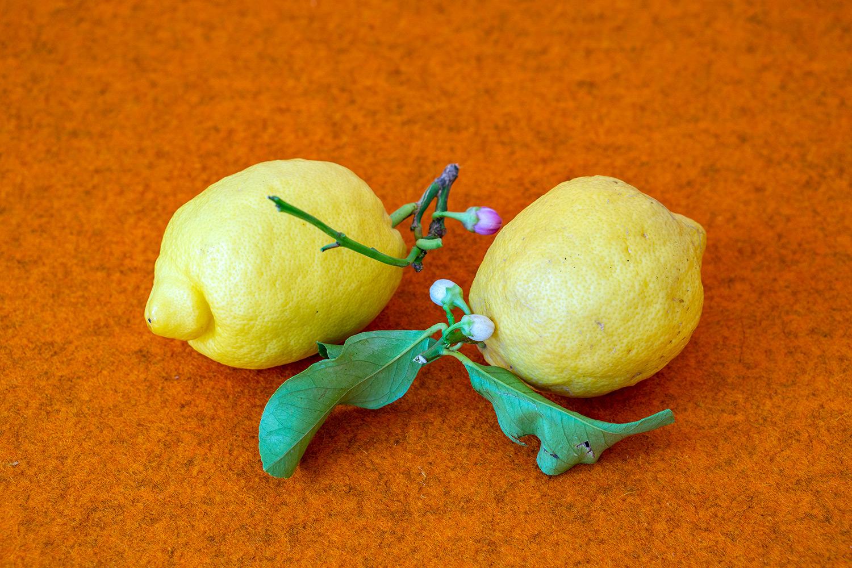 Ayurveed-Zitronen.jpg