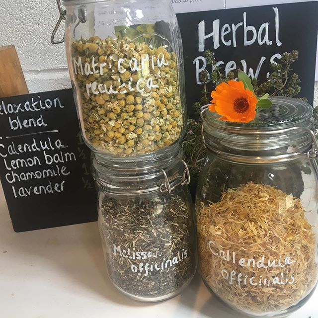 Discover the Herber-made relaxing infusion in the Herbernaculum this morning #aldevalleyspringfestival #calendula #herbalremedies