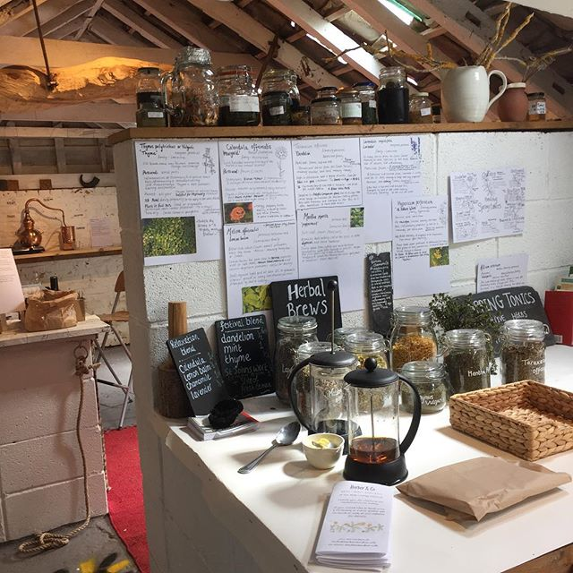 Tea tasting, soap-making & distillation this weekend at the Alde Valley Spring Festival 🔎🌿🌱