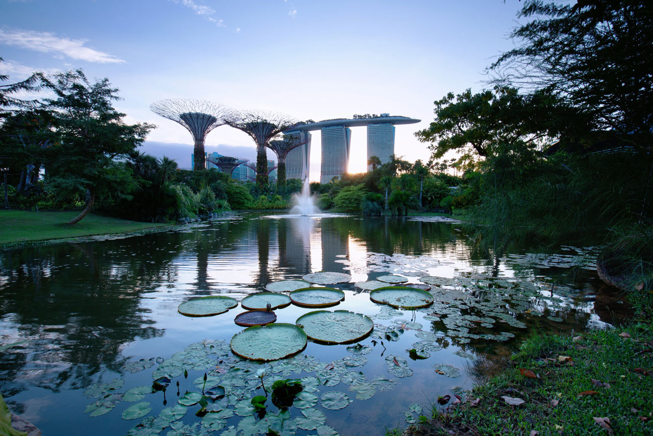 Book a singapore stopover tour to explore Gardens By The Bay