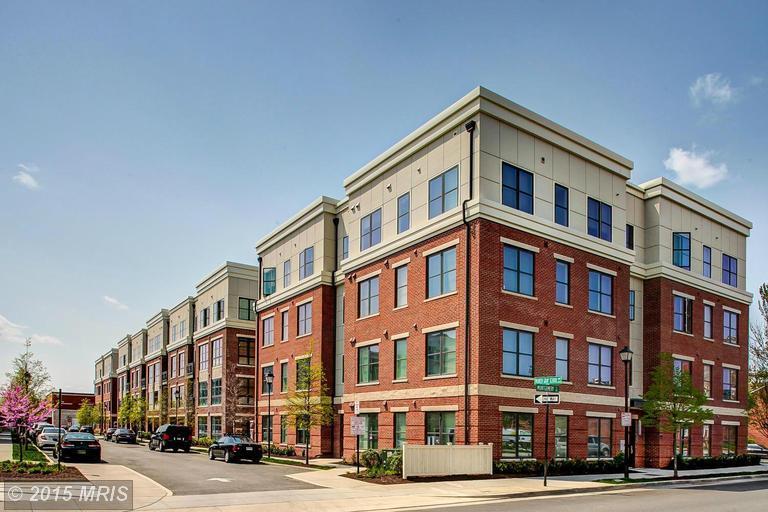 Rental Properties -