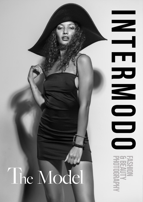 Intermodo - The Model.jpg