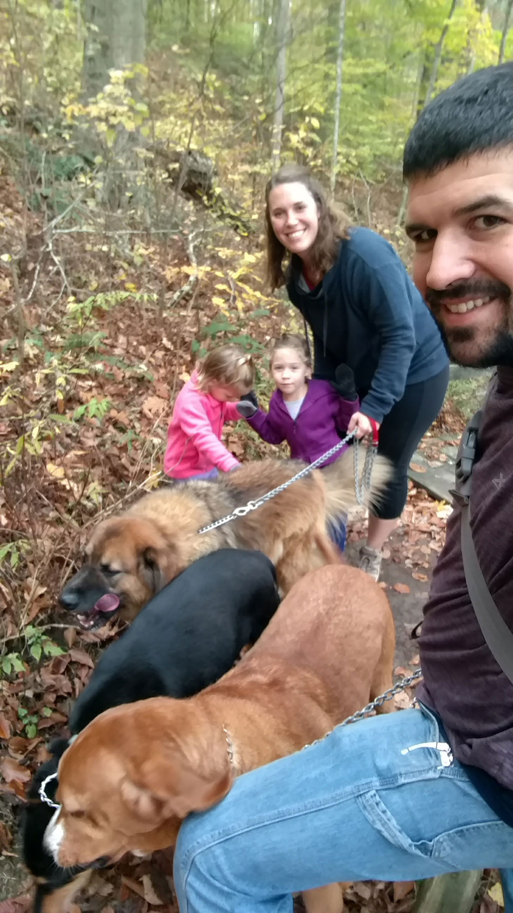 family-hike-with-3-big-dogs.jpg