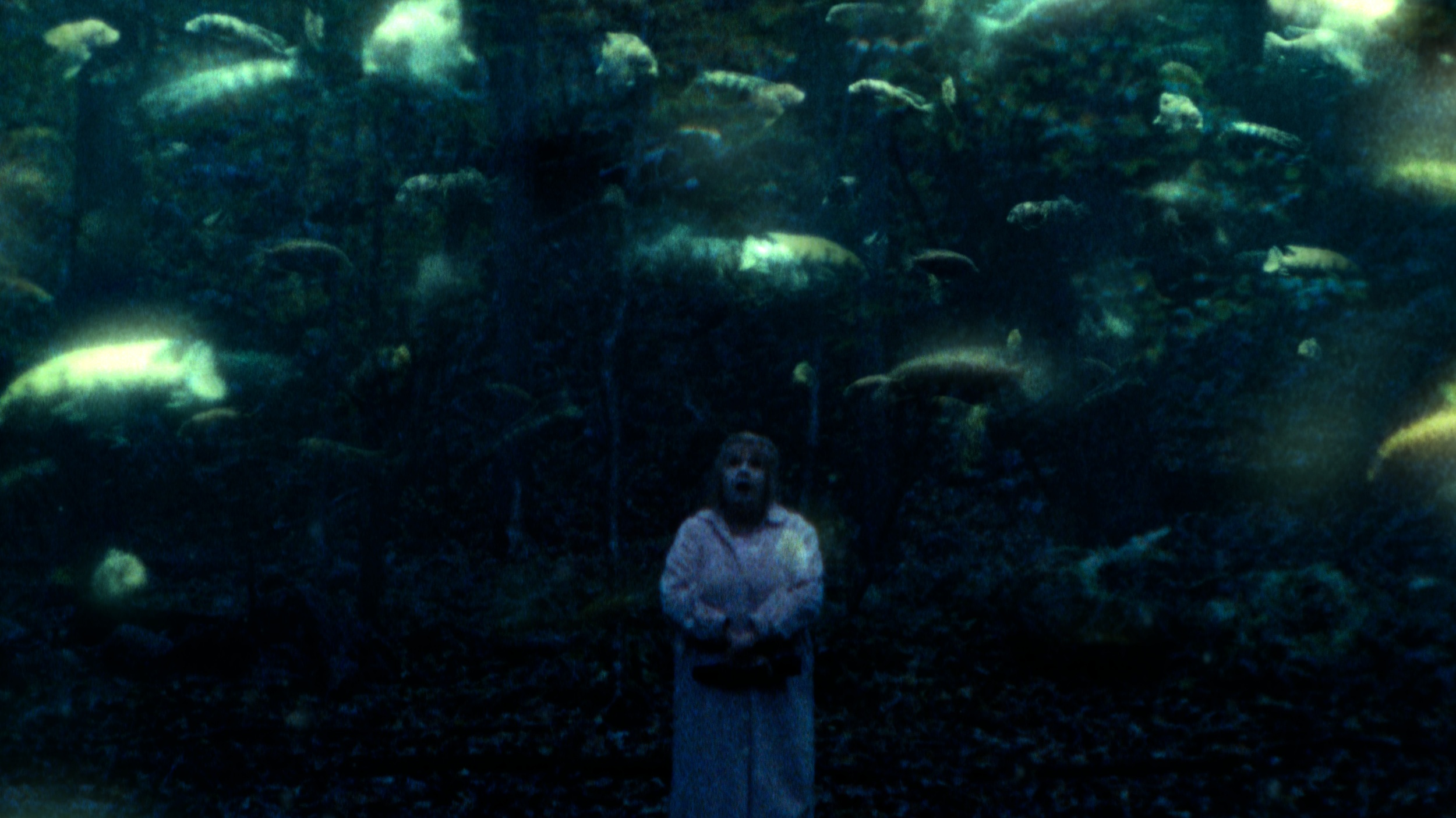 - Ghostfish