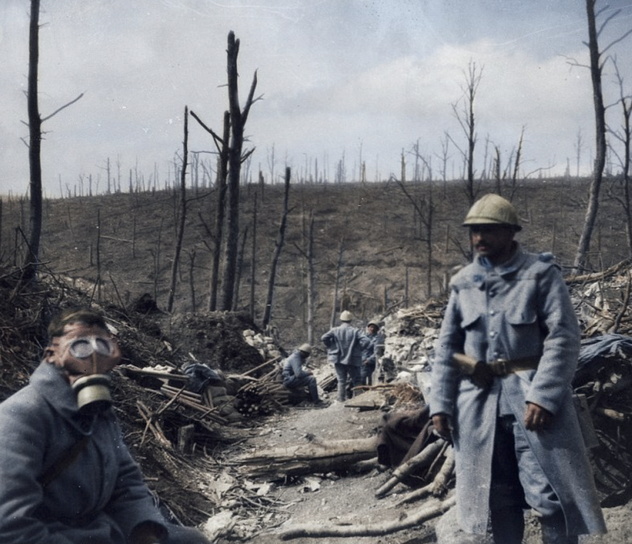 """- """"…Beyond, in the valley, dark masses are moving over the snow covered ground. It is the German infantry advancing in packed formation. They look like a big grey carpet being unrolled over the country.There is a whistle over our heads. It is the first shell. It falls right in the middle of the enemy infantry… through glass we can see men maddened, men covered with earth and blood, falling one upon the other. When the first wave is decimated, the ground is dotted with corpses, but the second wave is already pressing on. Once more our shells carve awful gaps in their ranks, then our heavy artillery bursts forth with fury. The whole valley is turned into a volcano, and its exit is blocked by the barrier of the slain.""""Account from anonymous French officer on the opening days of the Battle of Verdun."""