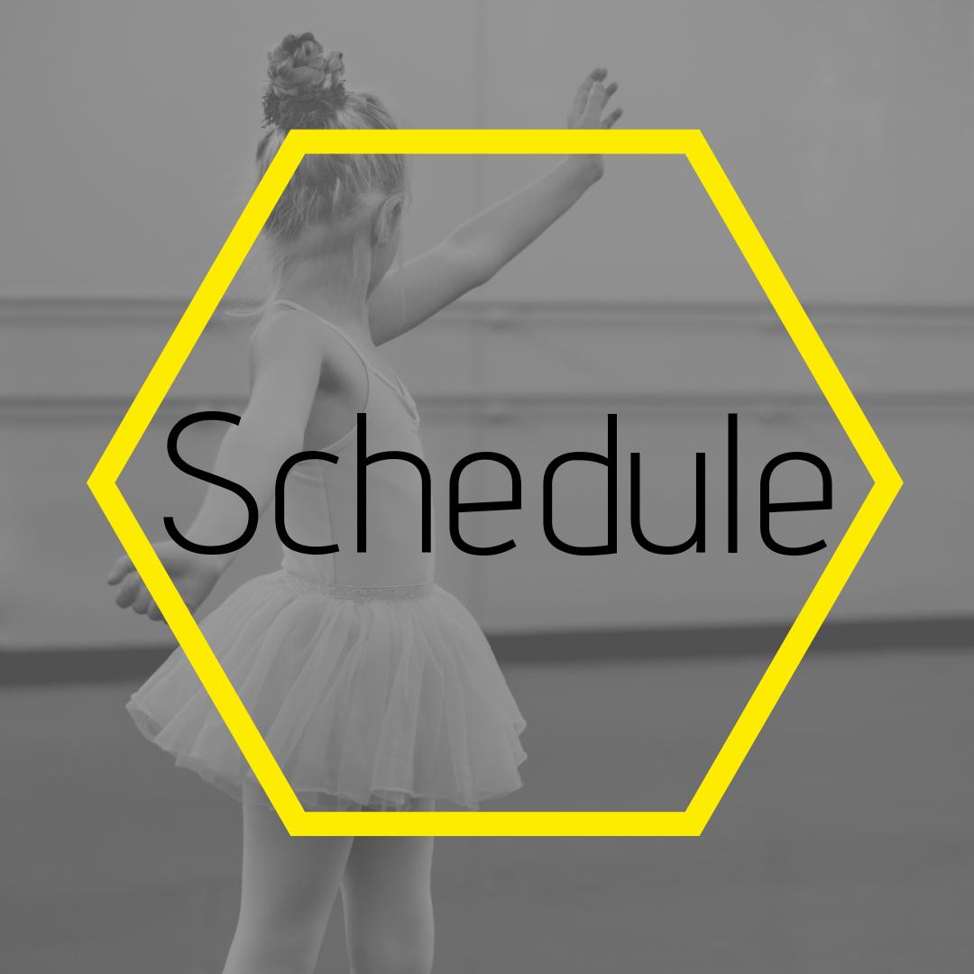 Box- Schedule Dance City.png