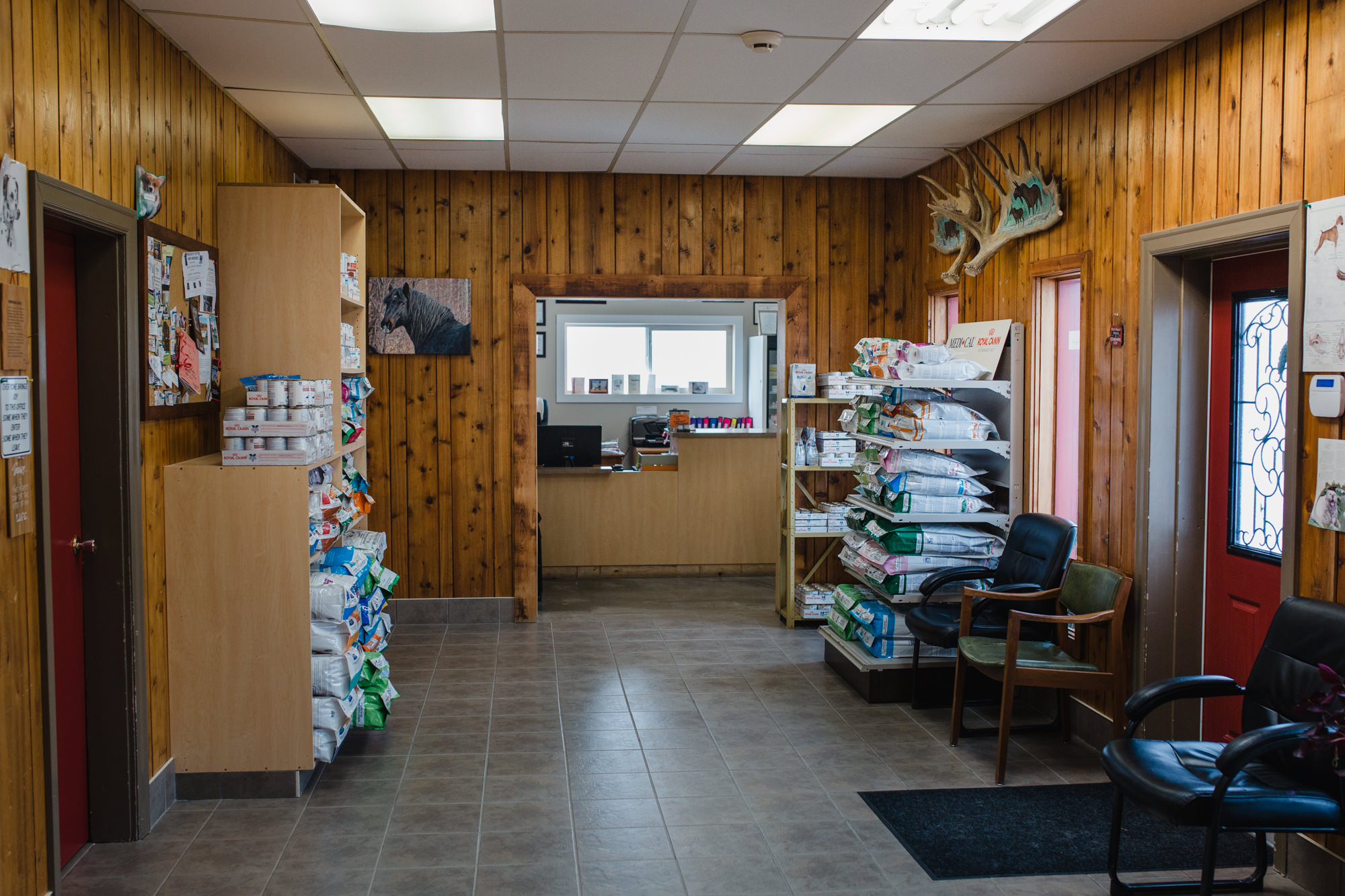 quesnel-verterinary-clinic-qvc-quesnel-vets-large-small-animal-clinic-quesnel-bc (30 of 43).jpg