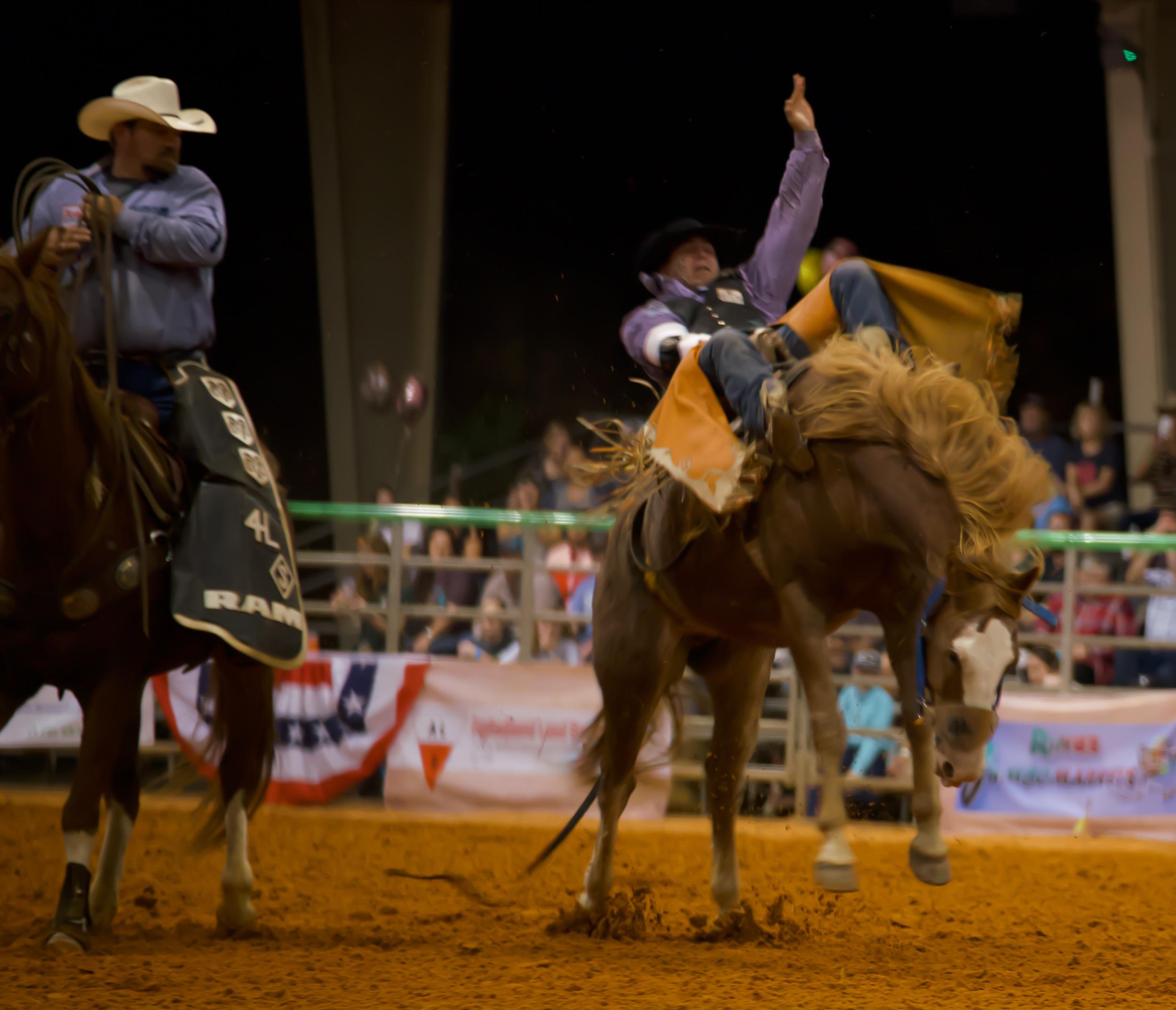 Rodeo-01666.jpg