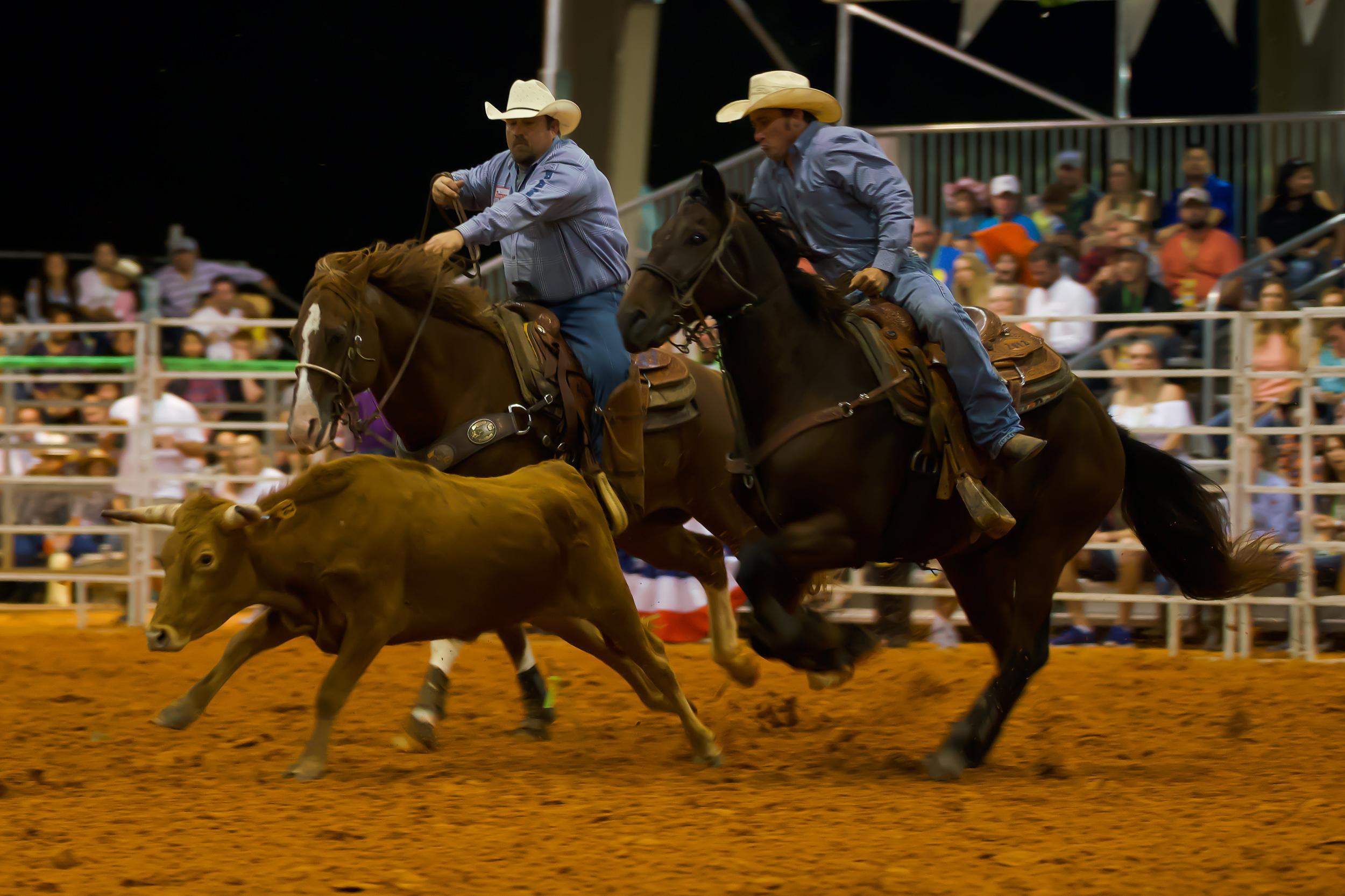 Rodeo-01696.jpg