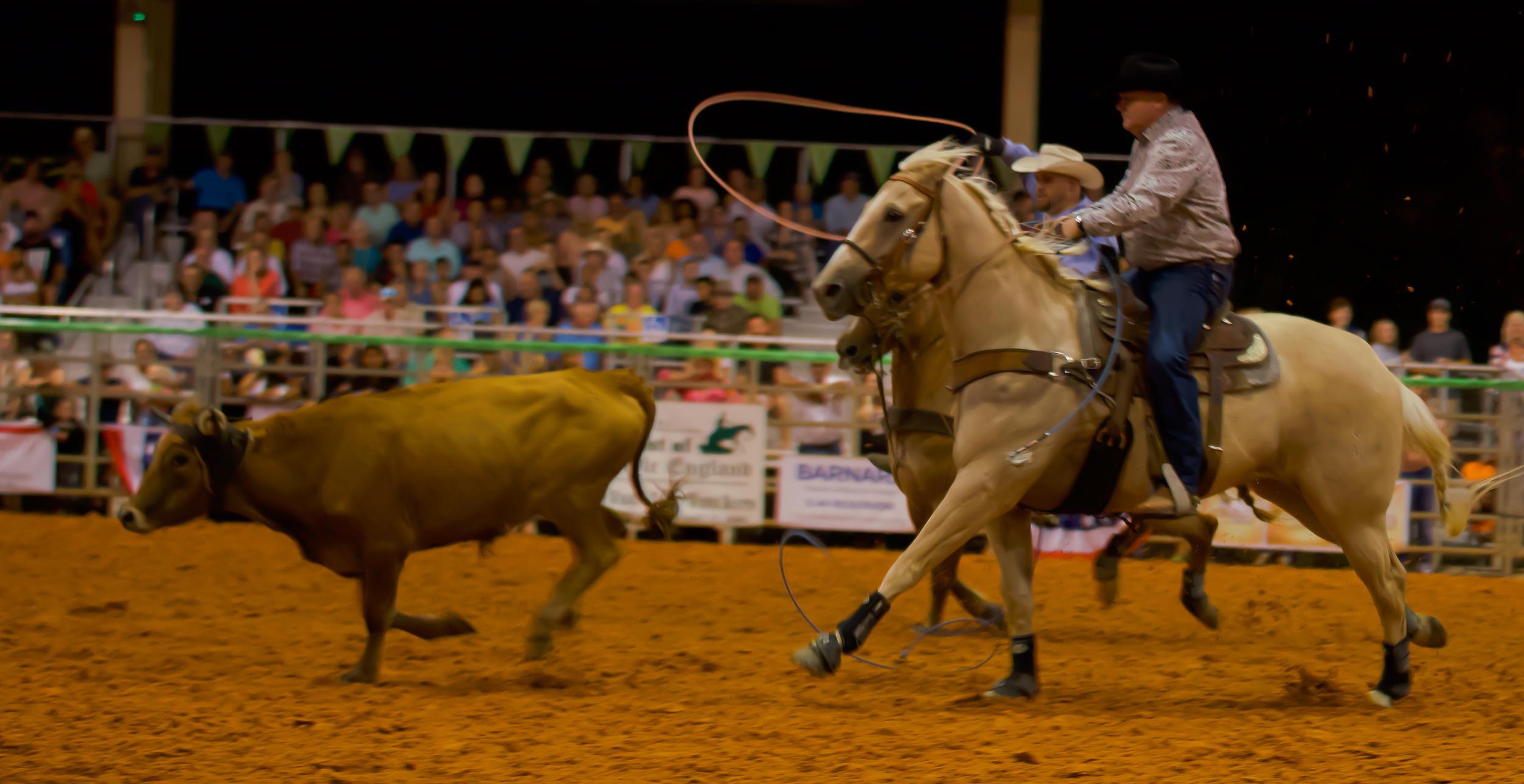 Rodeo-01819.jpg