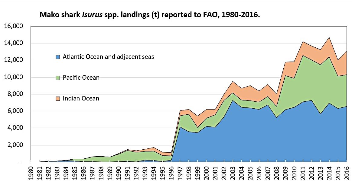 Global landings of mako sharks since 1980 | FishstatJ, 2018