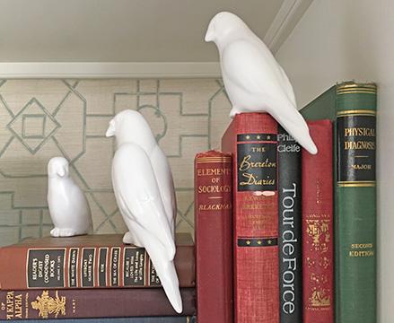 Chapley Birds.jpg