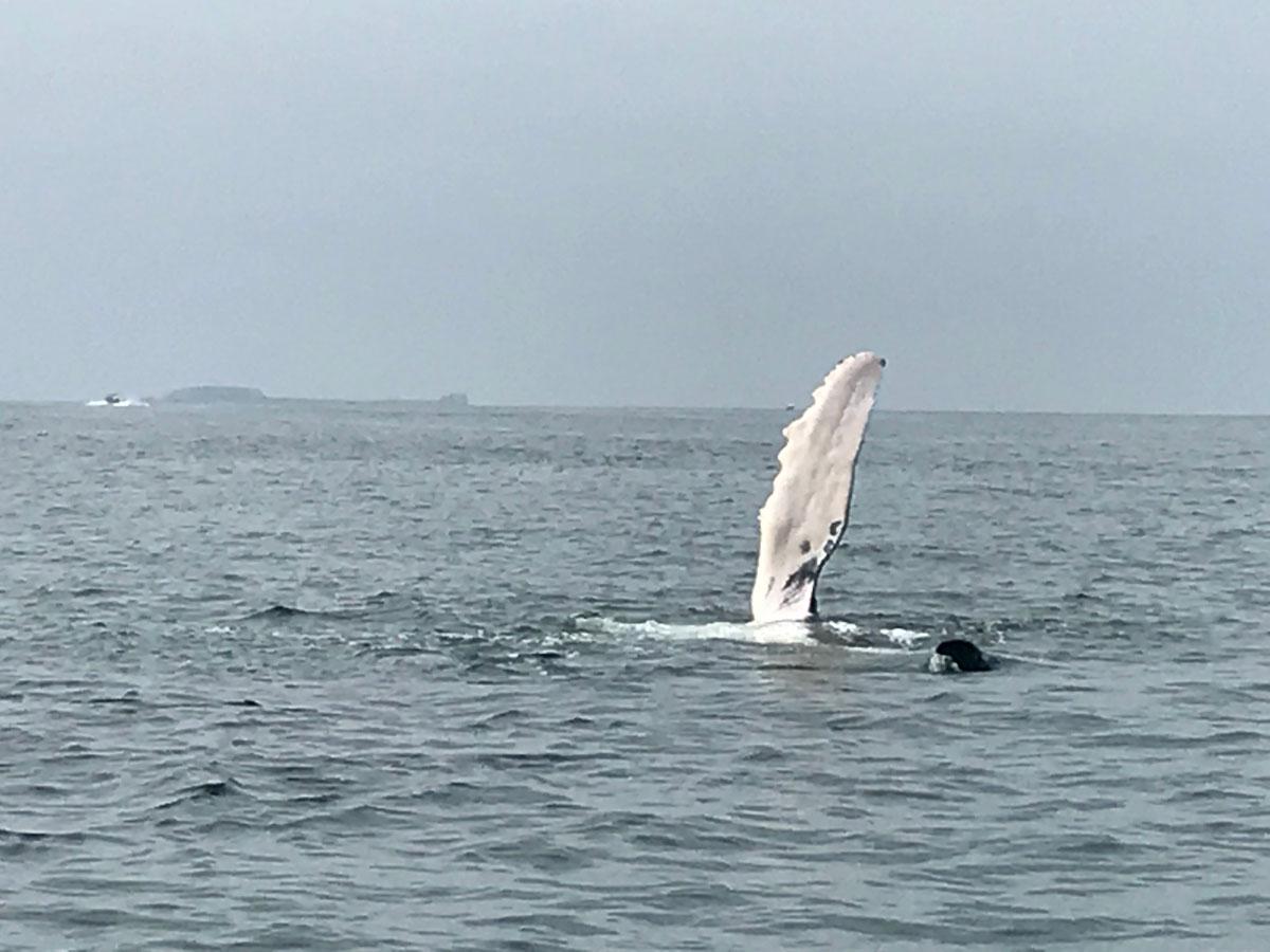 Orign-agency-surf-camp-4.jpg