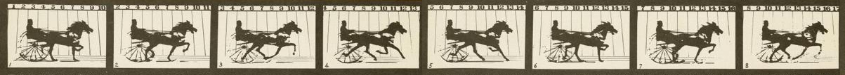 Eadweard Muybridge's 1878 Photographic Studies of a Horse in Motion at Palo Alto Racetrack, California