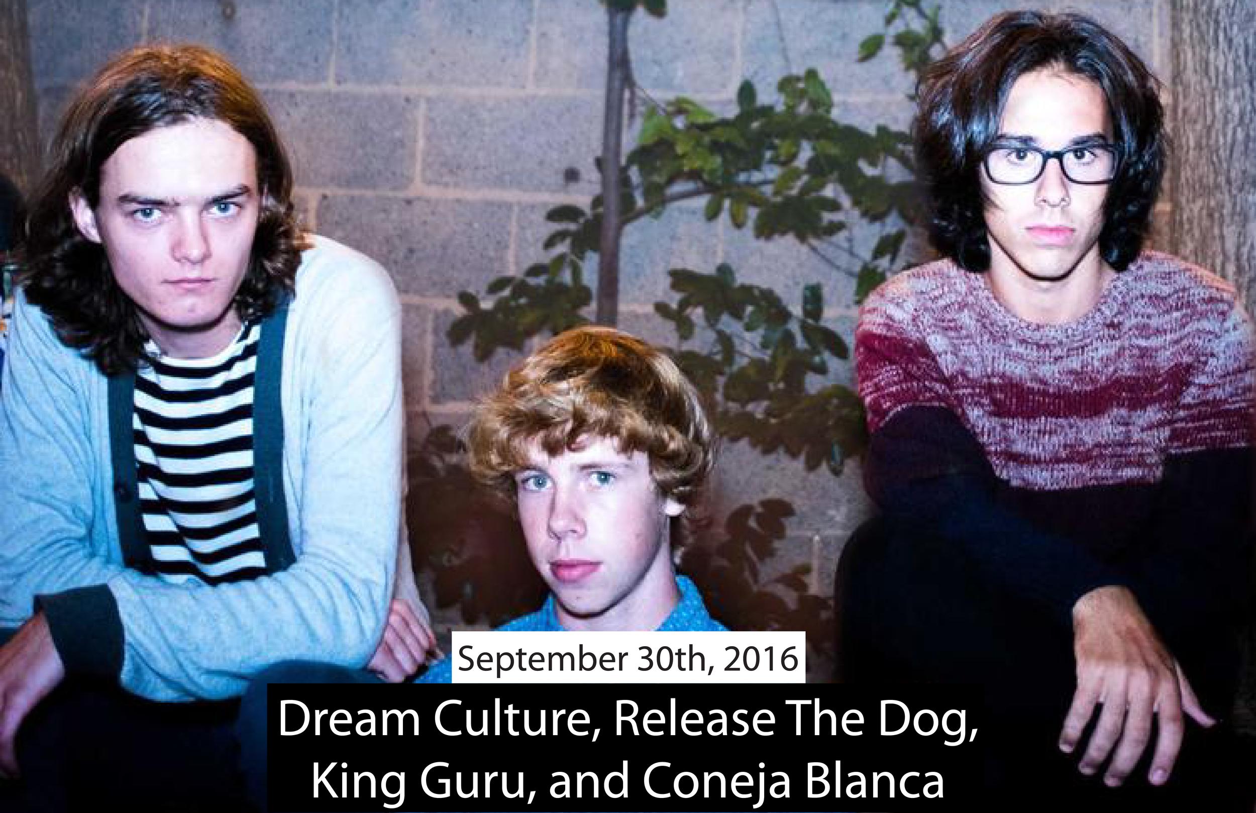 Dream Culture Big-01.png