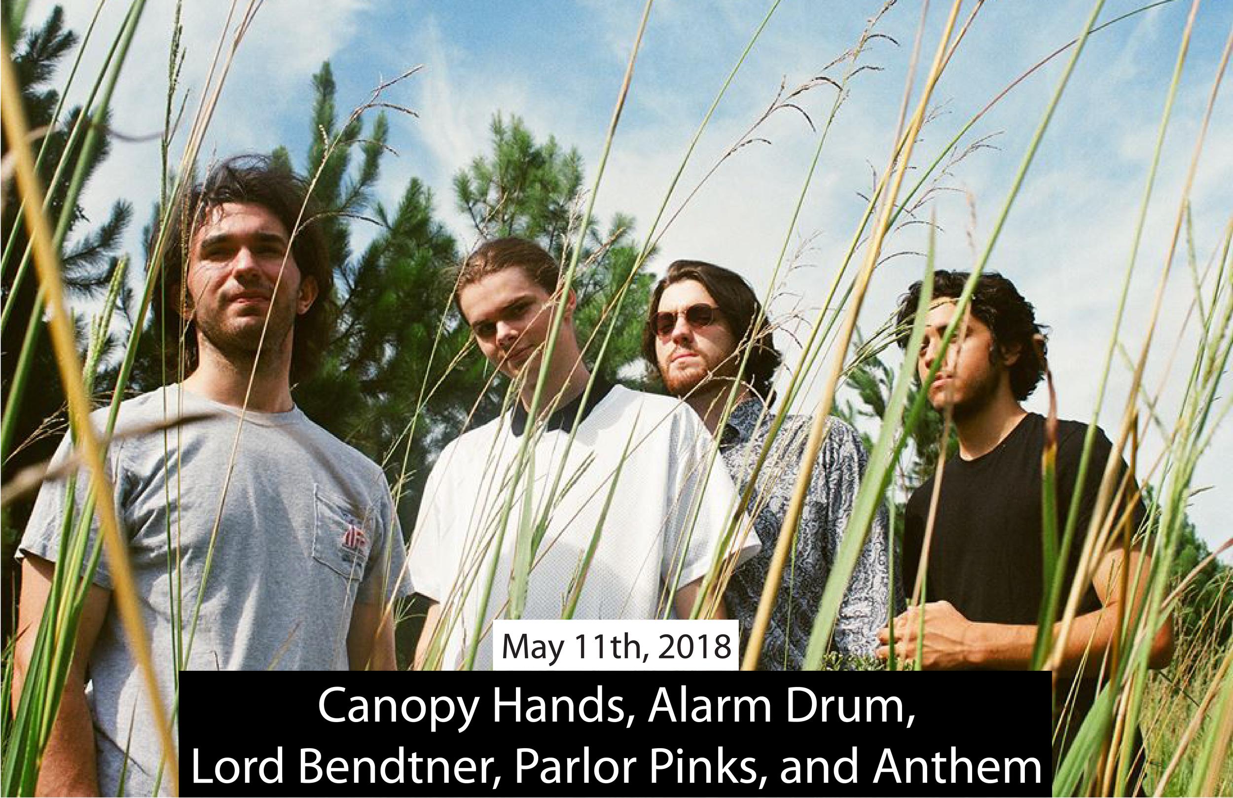 Canopy Hands 2018 BIG BIG BIG-01.png