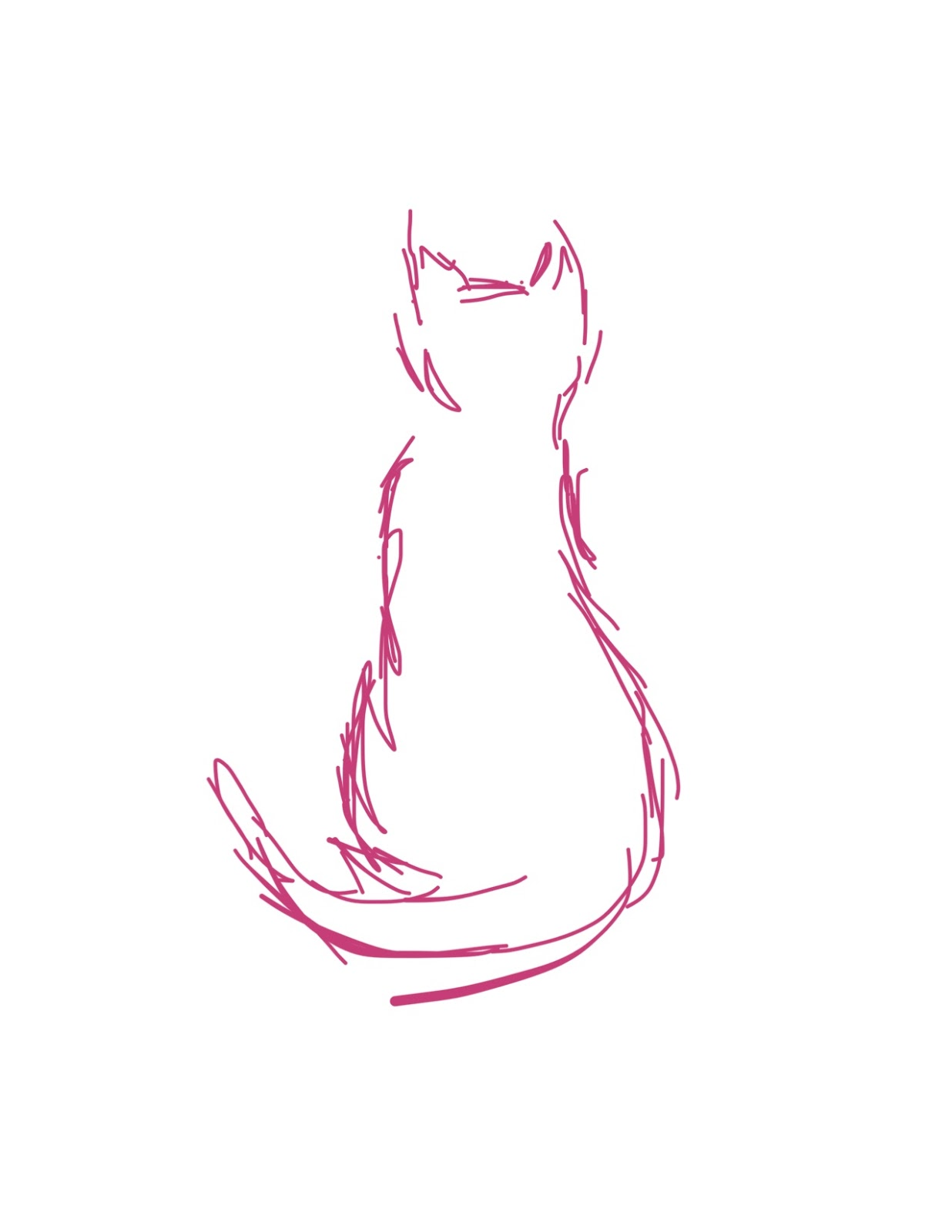 Sketched outline of cat