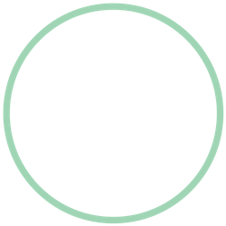 unfilled circle.png