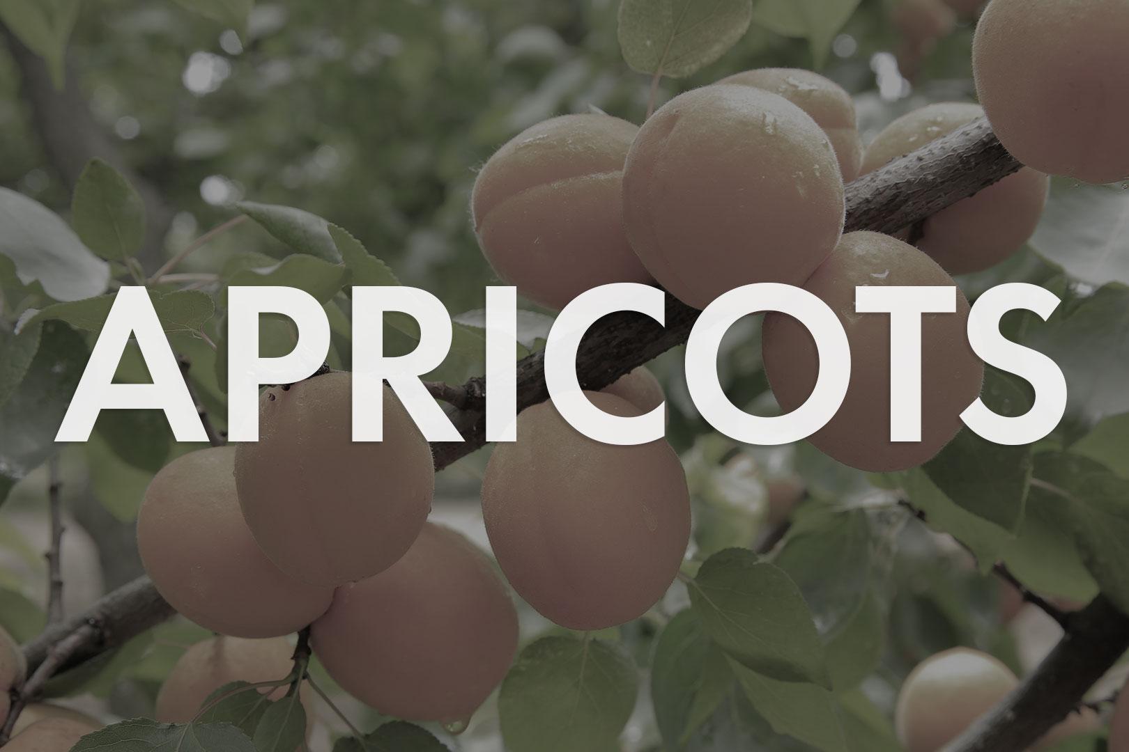 VWN-Web-Inventory_Thumnails-Apricots.jpg