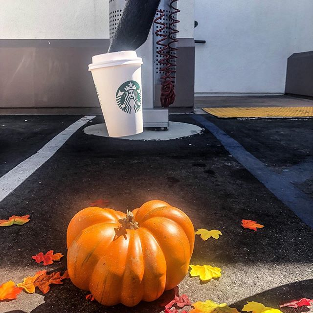 Vacuums that are anything but basic🍁 #PumpkinSpice #FirstDayOfFall #RussellFischerXpress