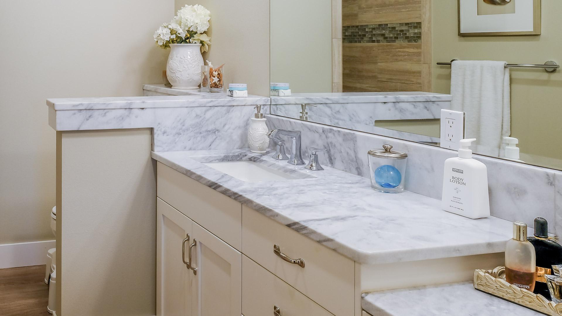 Stebbin Master Bath Counter.jpg