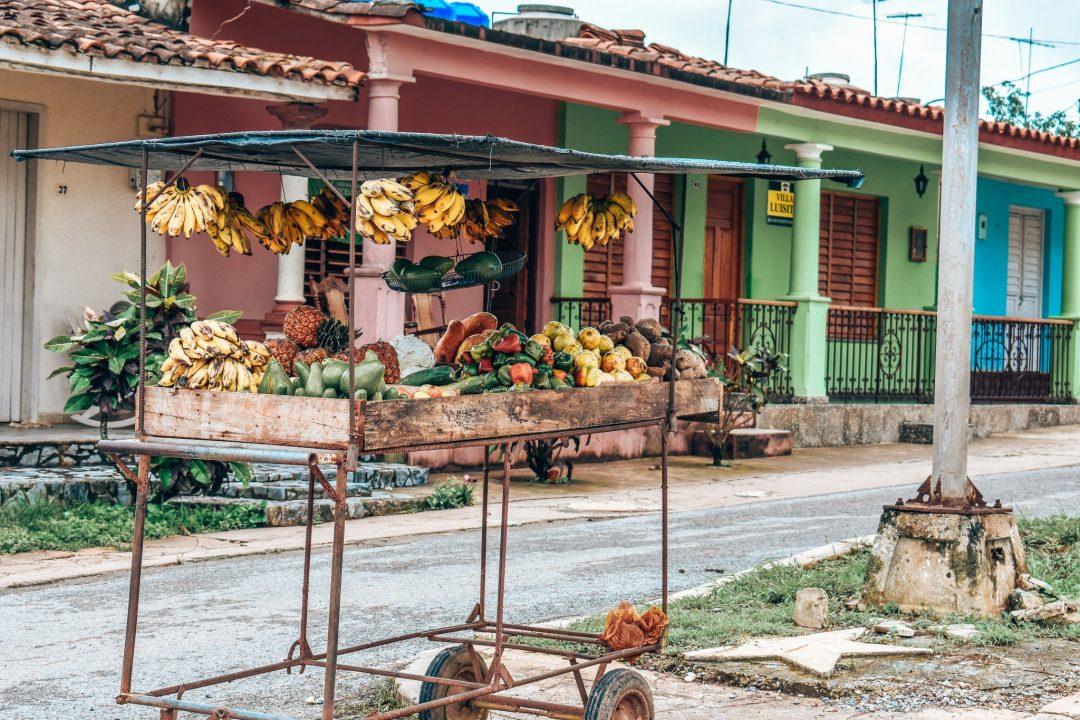 vinales-cuba-tobacco-plantations