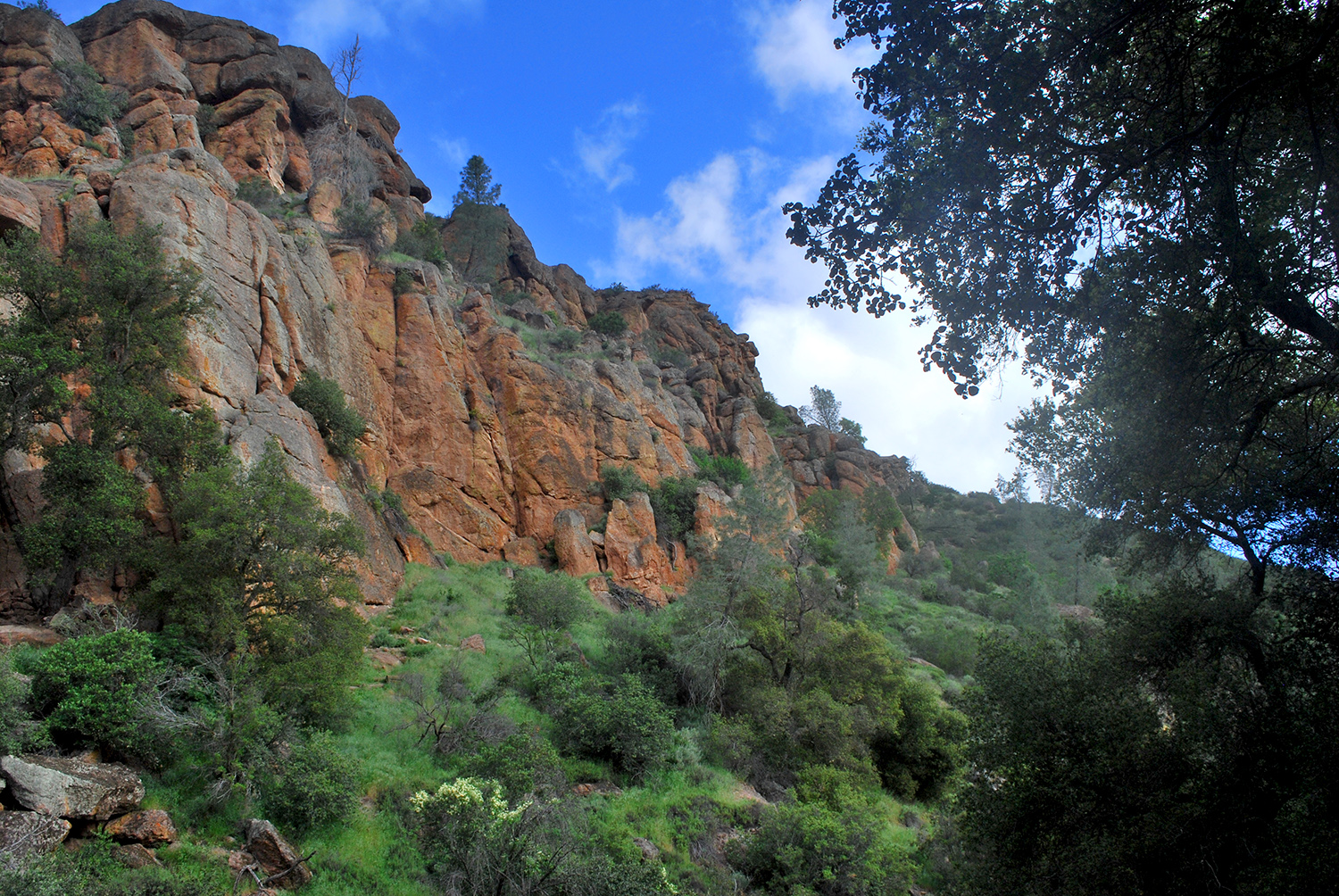 Pinnacles Nationa Park peeks.jpg