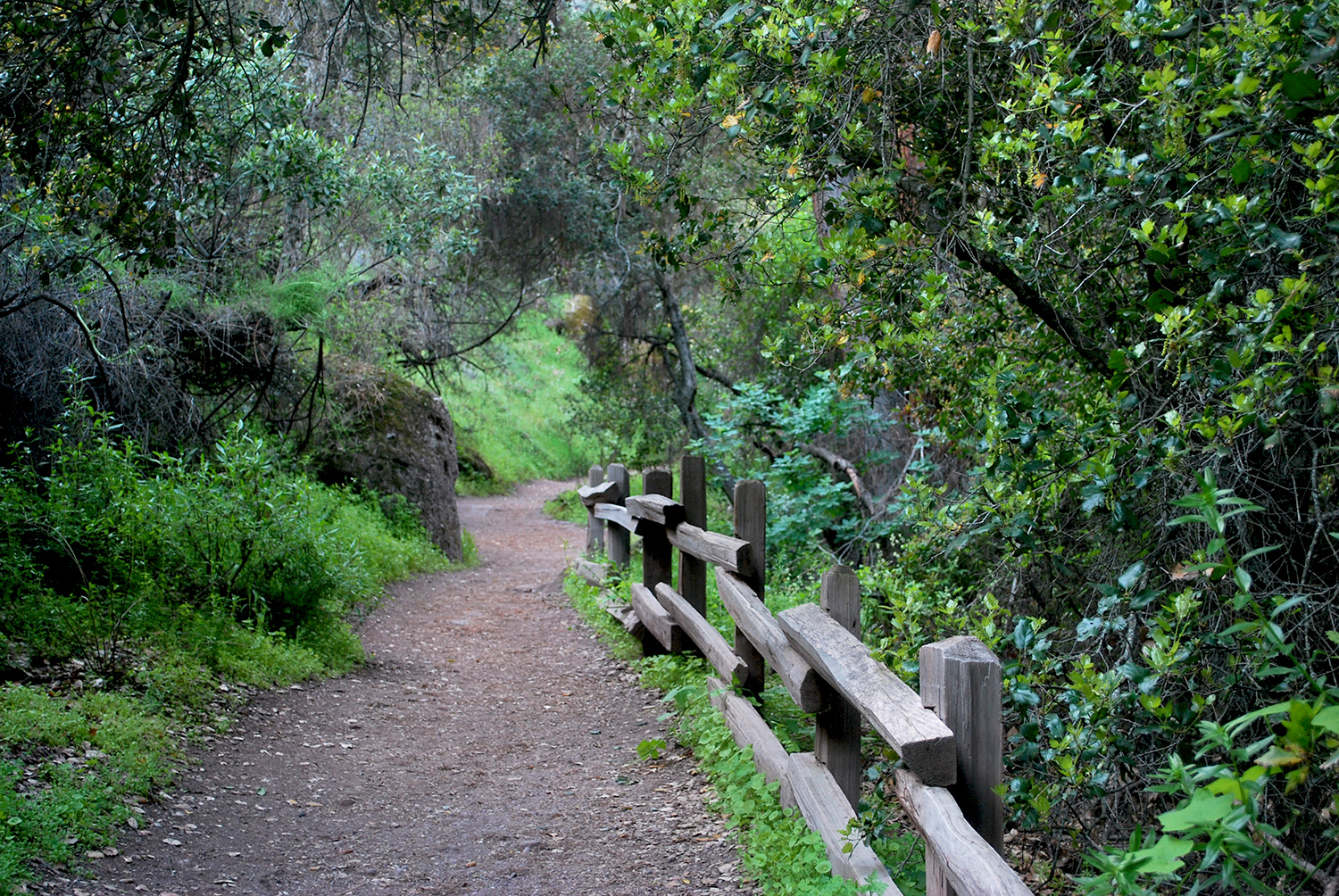 Pinnacles Nationa Park pathways.jpg