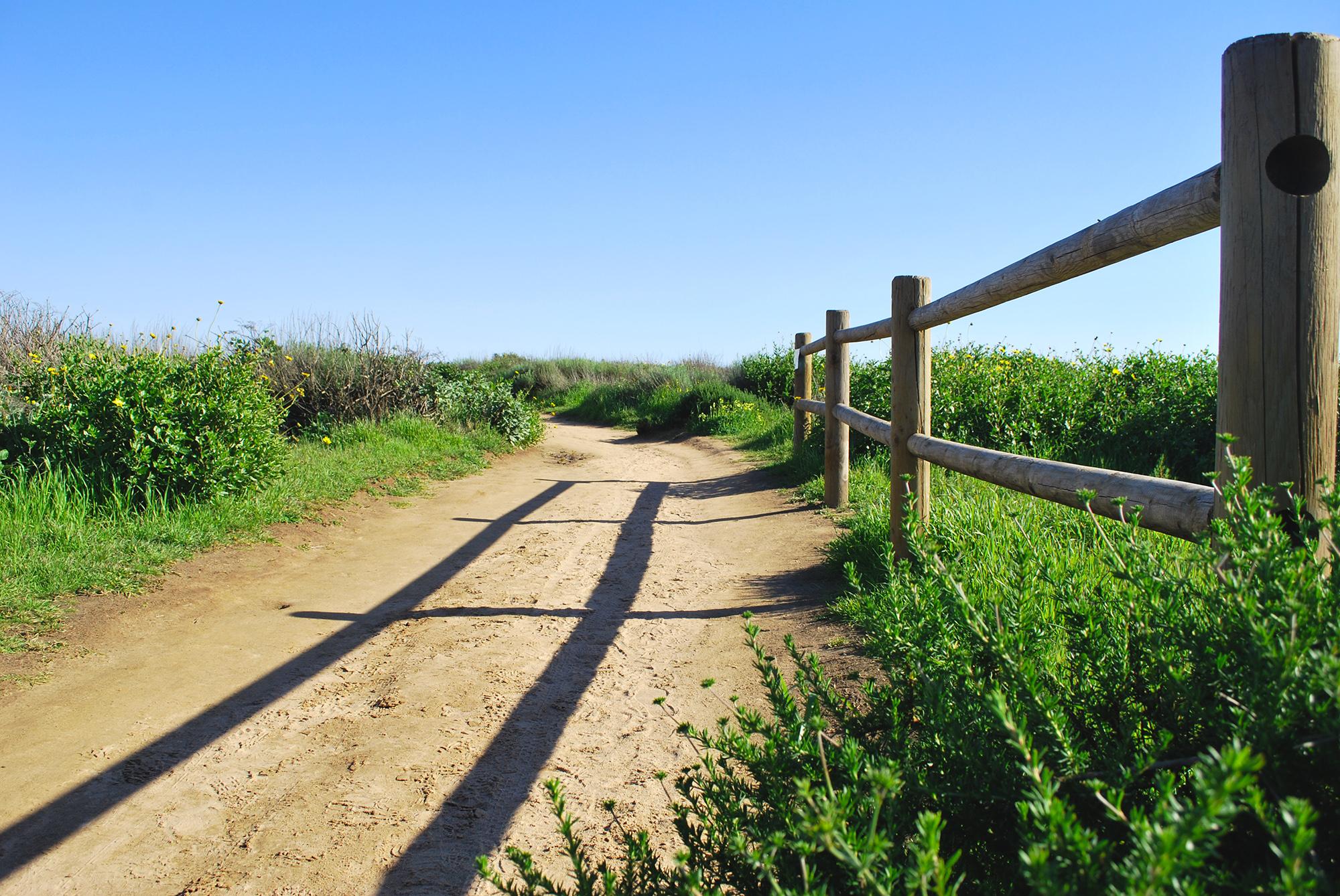 Bolsa Chica pathway.JPG