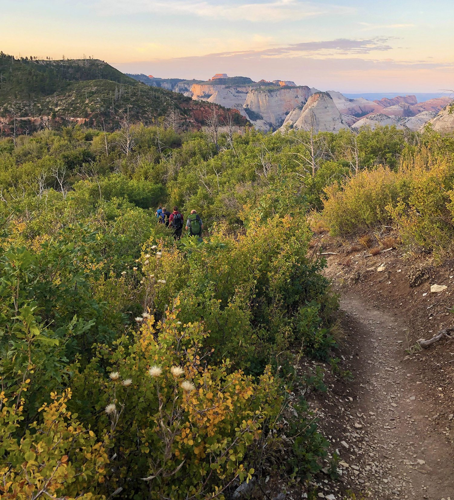 HikingWestRiminZion.jpg