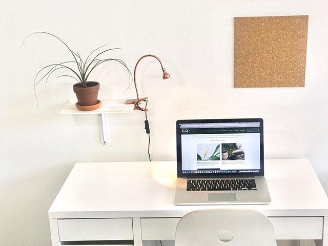 Our designated desk workspace, the optimal workspace for someone working off their computer! Contact us, we can accommodate your needs ✨ • • •  #coworkingridgewood #CO #coworkingstudio #bushridge #deskspace #coworkingnyc #ridgewoodqueens