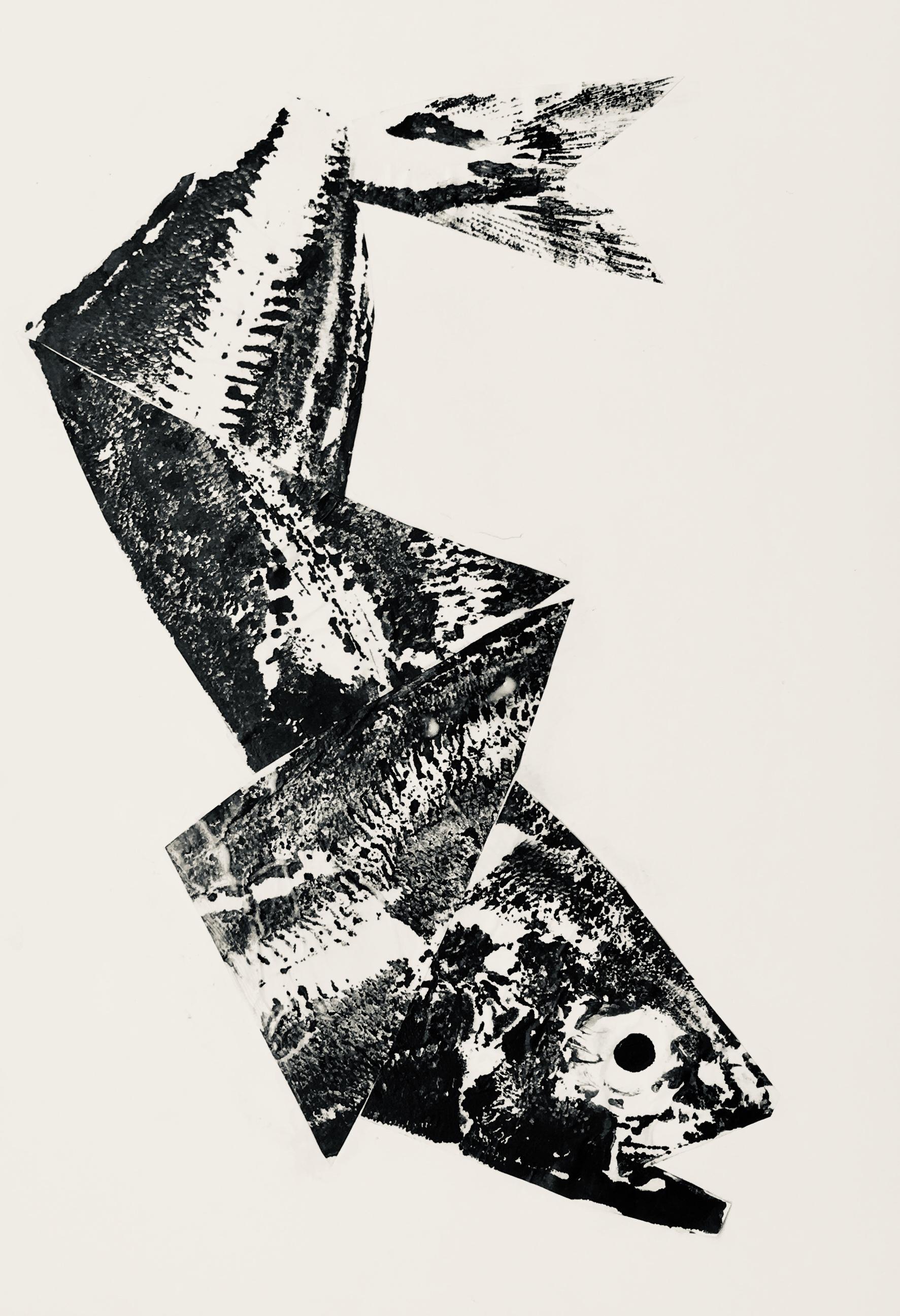 gyotaku-collage.jpg