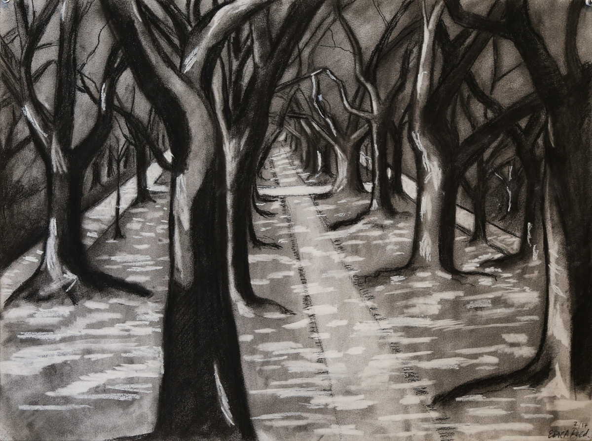 North Boulevard   Charcoal  24 x 18  2017