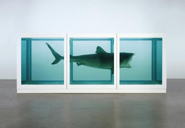 The Physical Impossibility of Death in the Mind of Someone Living   Damien Hirst  1991  2170 x 5420 x 1800 mm | 85.5 x 213.4 x 70.9 in  Glass, painted steel, silicone, monofilament, shark and formaldehyde solution