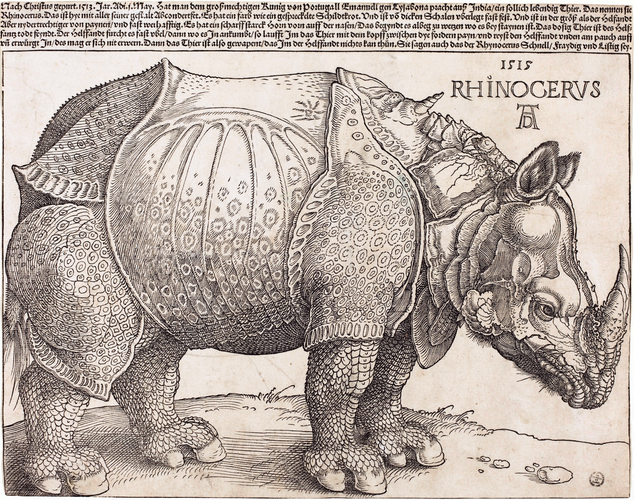 Albrecht   Dürer , The Rhinoceros,  1515, National Gallery of Art, Washington