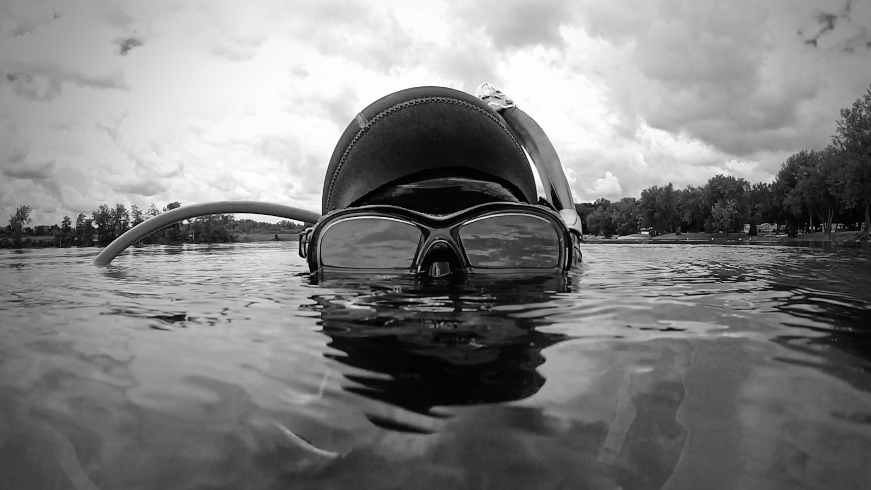 aquaticcinematographer.jpg